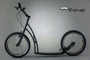 Express (20/20)