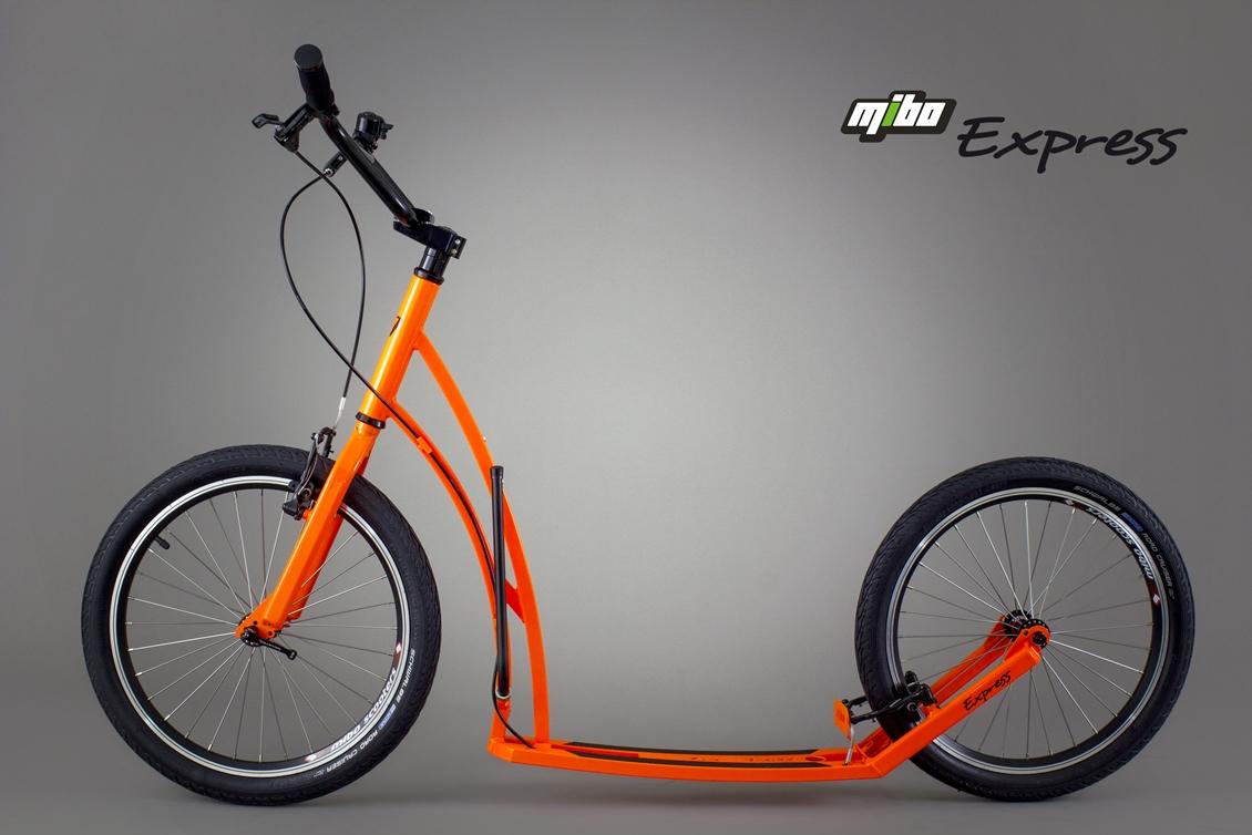 Oranžová kráska